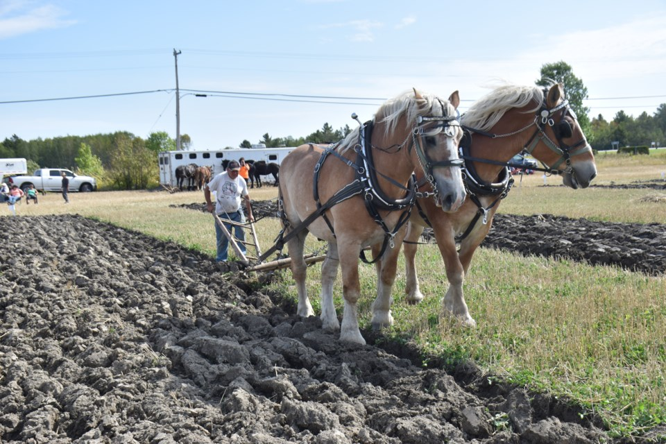 The 2019 International Plowing Match and Rural Expo kicked off on Sept. 17 and will continue until Sept. 21